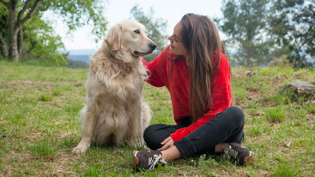 A woman in a red top strokes a dog.