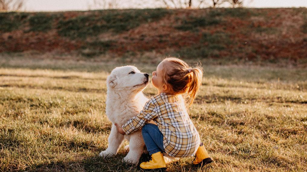 A child hugs a dog.