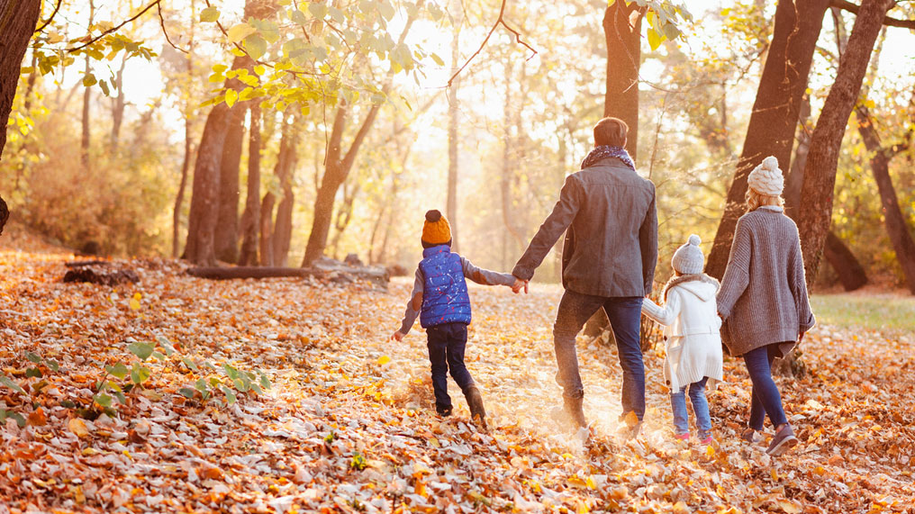 a family walks through the woods