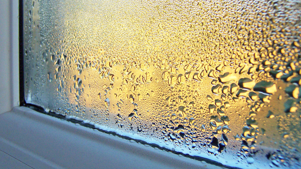 Condensation forms on a window.