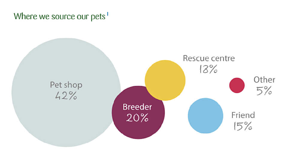 Graphic showing where we get our pets from